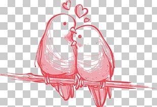 Bird Valentine's Day Wedding Gift PNG