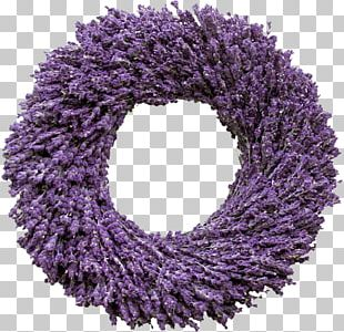 English Lavender Wreath Flower French Lavender PNG