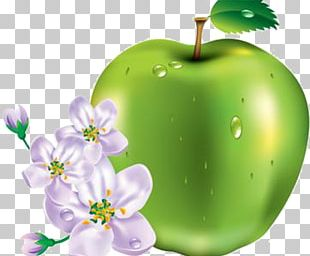 An Apple A Day Keeps The Doctor Away Clipping Path PNG