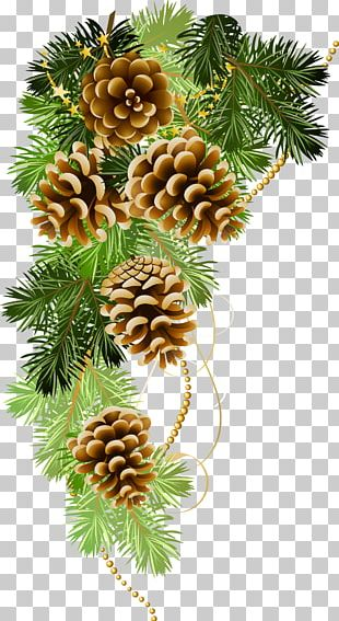 Christmas Ansichtkaart Holiday Greeting & Note Cards New Year PNG