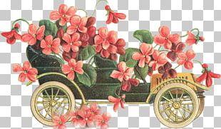 Flower Vintage Clothing Floral Design Greeting & Note Cards PNG
