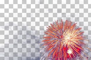 Fireworks Traditional Chinese Holidays Festival Firecracker Chinese New Year PNG