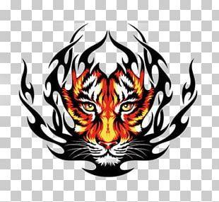 Tiger Tattoo Drawing PNG