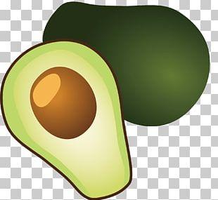 Avocado Watercolor Painting Computer File PNG