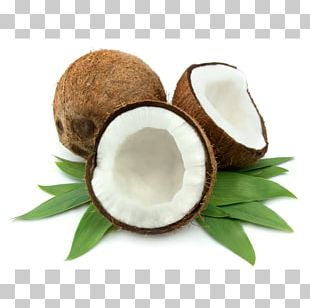 Coconut Oil Food Coconut Water PNG
