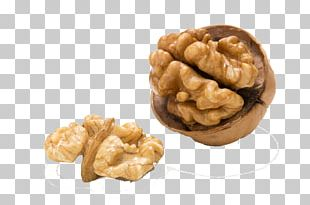 Walnut Food Eating Blood Vessel PNG