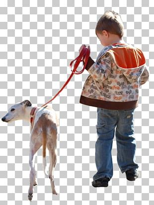 Dog Walking Architecture PNG