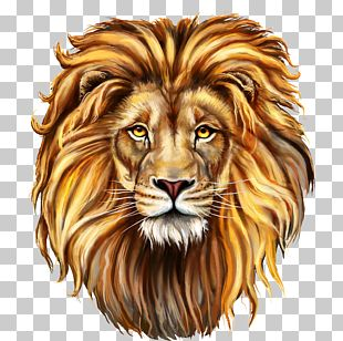 The Red Lion Shutterstock PNG