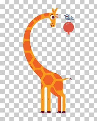 Northern Giraffe Illustrator Drawing Illustration PNG