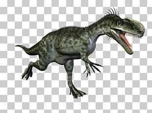 Tyrannosaurus Velociraptor Cryolophosaurus Monolophosaurus Concavenator PNG