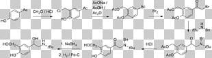 Molecule Apolaire Verbinding Amphiphile Methyl Group Substituent PNG