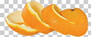 Orange Peel Orange Peel Skin Banana Peel PNG