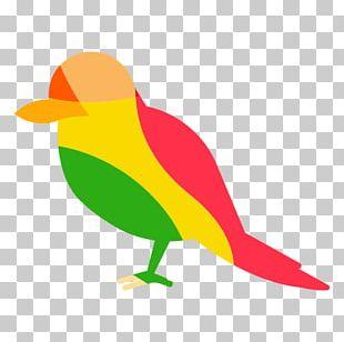 Bird Red-headed Woodpecker Finches Beak PNG