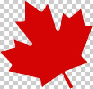 Flag Of Canada Maple Leaf Portable Network Graphics PNG