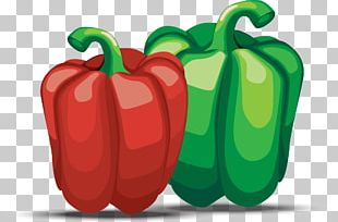 Bell Pepper Chili Pepper Pimiento PNG