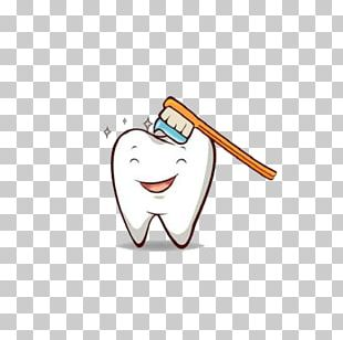 Tooth Brushing Dentistry PNG