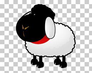 Boer Goat Sheep Farming PNG