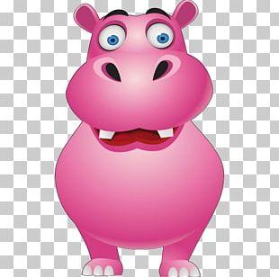 Hippopotamus Cartoon Pig PNG