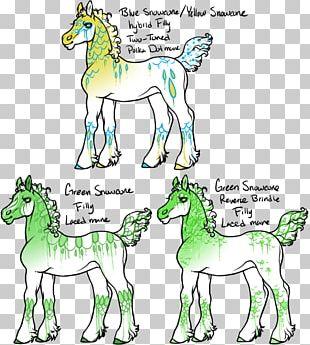 Horse Foal Camel Art Palomino PNG