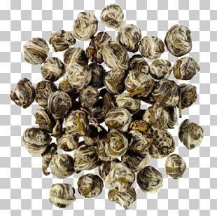 Green Tea White Tea Oolong Matcha PNG