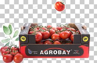 Bush Tomato Agrobay Satış Mağazası PNG