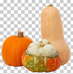 Pumpkin Gourd Vegetarian Cuisine Winter Squash Autumn PNG
