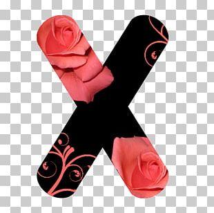Petal Shoe Flower Rose Font PNG