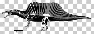 Spinosaurus Baryonyx ARK: Survival Evolved Tyrannosaurus Theropods PNG