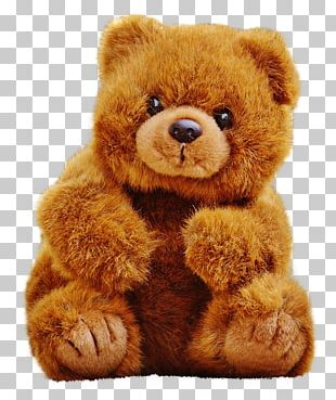 Gift Teddy Bear PNG