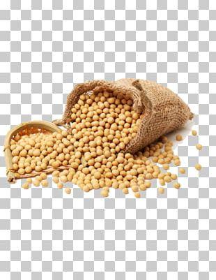 Dal Soy Milk Soybean Health Food PNG