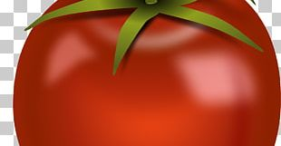Tomato Natural Foods Chili Pepper Bell Pepper PNG