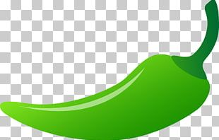 Chili Pepper Bell Pepper Vegetable PNG