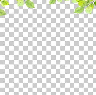Area Leaf Pattern PNG