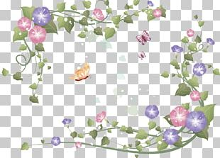 Flower Photography PNG