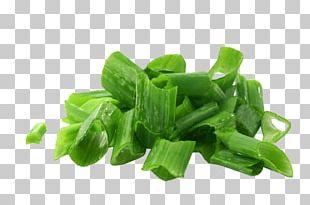 Shallot Scallion Allium Fistulosum Garlic PNG