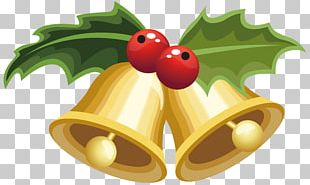 Mistletoe Christmas Viscum Album Common Holly PNG