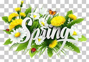 Season Spring Euclidean PNG