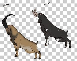 Dog Cattle Ox Horse Goat PNG