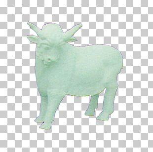 Sheep Cattle Goat Horn Green PNG