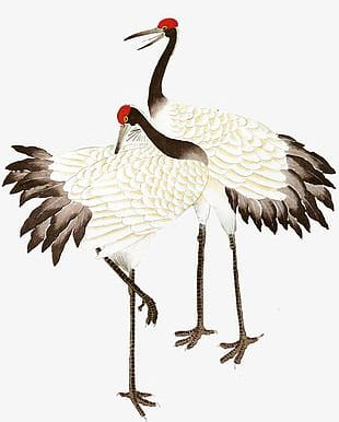 China Wind Ink Red-crowned Crane PNG