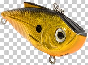 Spoon Lure Oily Fish Perch AC Power Plugs And Sockets PNG