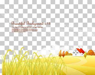 Autumn Illustration PNG