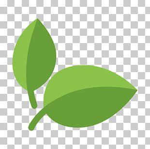 Organic Food Vegetarian Cuisine Computer Icons PNG