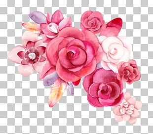 Still Life: Pink Roses Flower Creative Watercolor PNG