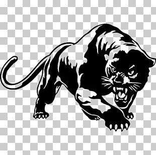 Black Panther Wall Decal Sticker Car PNG