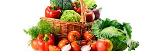 Organic Food Agriculture Dr Stephen Ferguson Ecology PNG