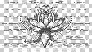 T-shirt Flower Nelumbo Nucifera Black And White PNG