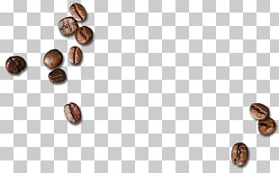 Coffee Bean PNG
