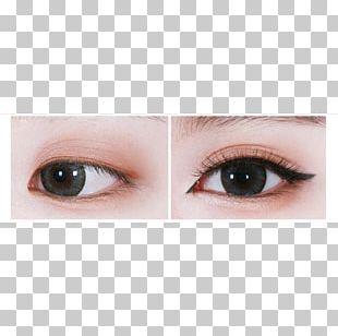 Eyelash Extensions Eye Shadow Eye Liner Lip Gloss Lip Liner PNG