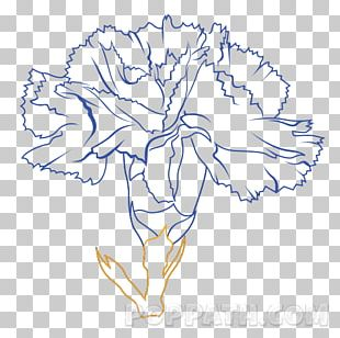 Floral Design Drawing Art Cut Flowers PNG